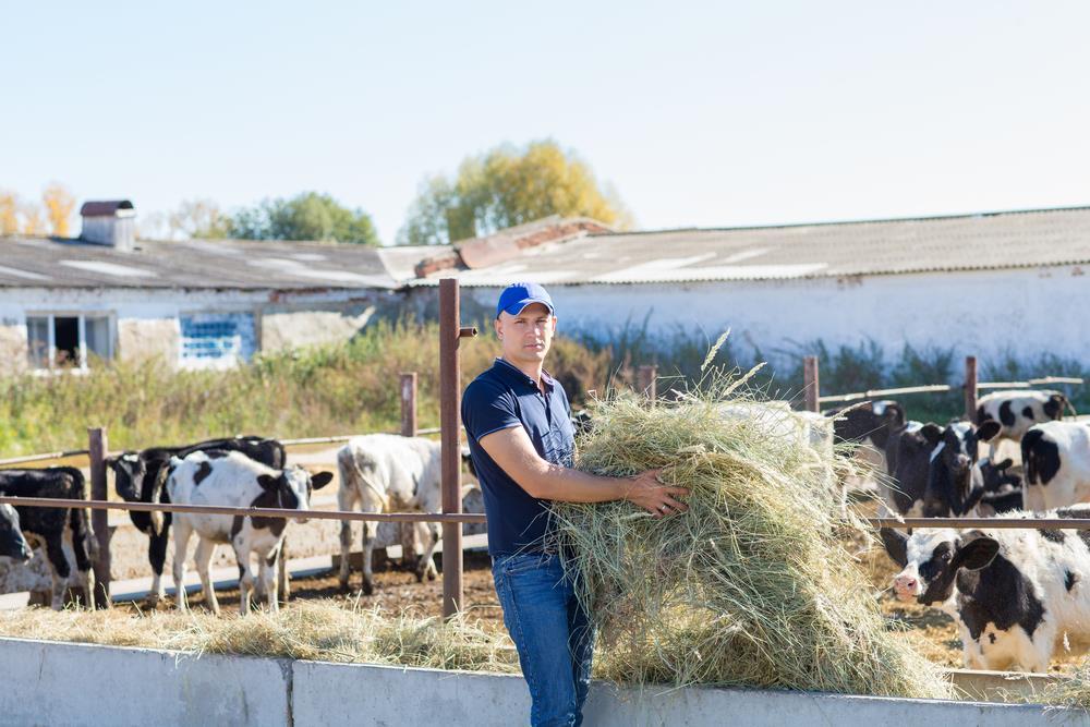 Farmarbeit im Ausland