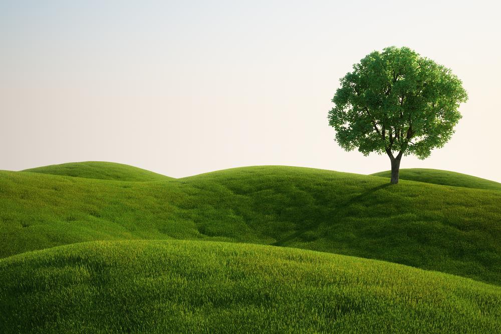 Umweltschutz Freiwilligenarbeit im Ausland